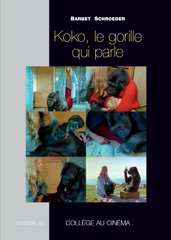 Koko, le gorille qui parle.png